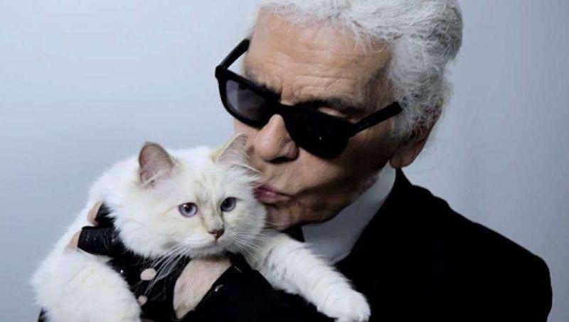 Choupette - Chat de Karl Lagerfeld